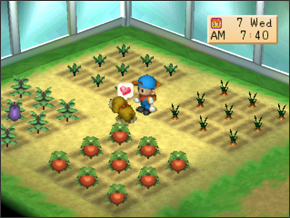Secrets & Cheats | Harvest Moon: Back to Nature Guide