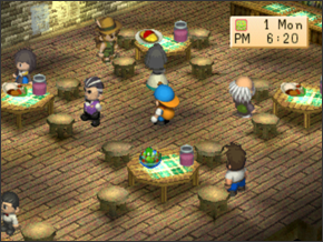 Festivals | Harvest Moon: Back to Nature Guide